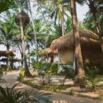 Retraite in strandhotel Goa met Maarten Olthof